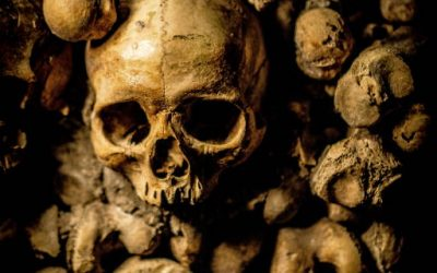 S1 E9 – Decomposition – Chapters 27 to 29